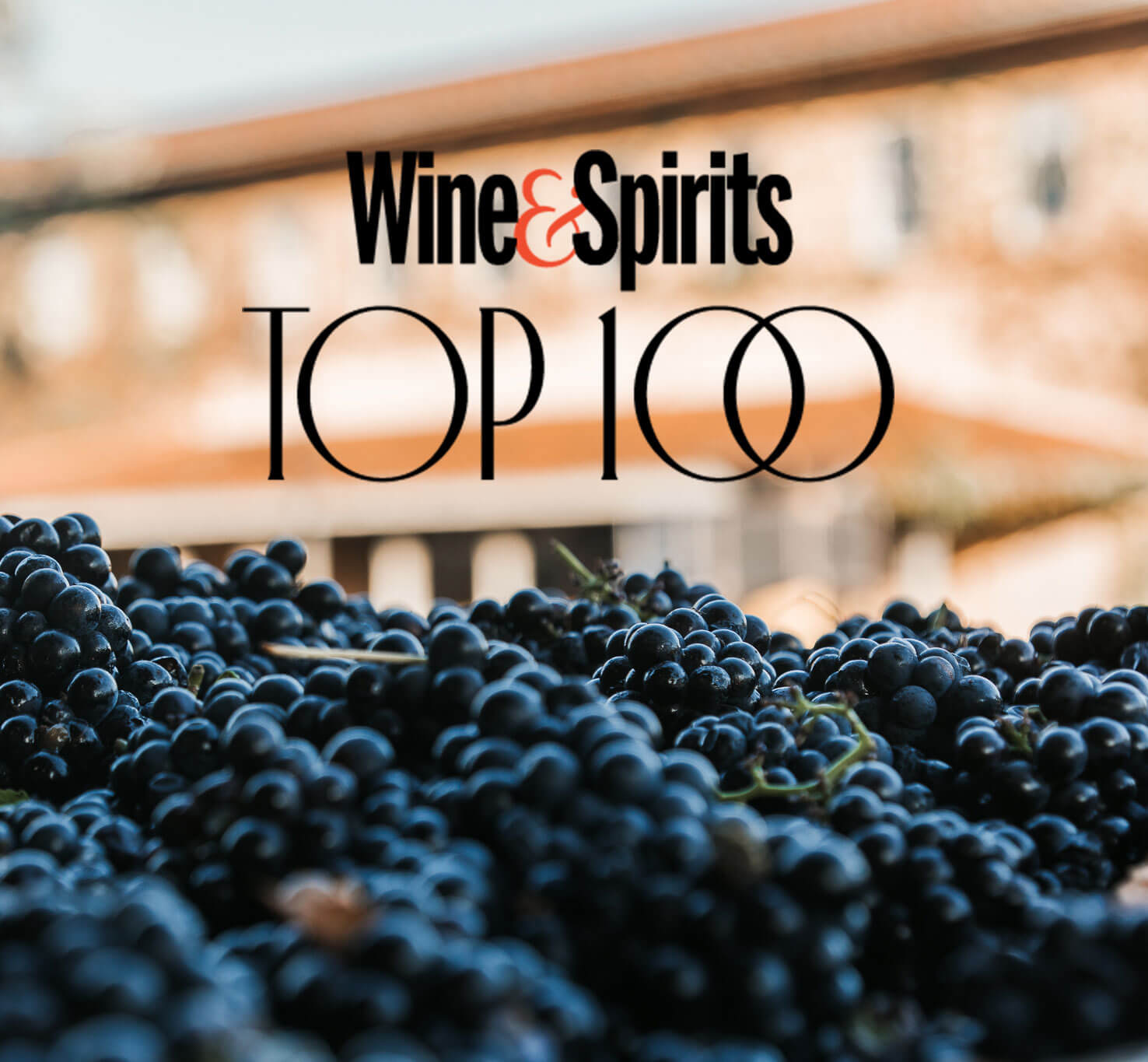 Talley Vineyards named Wine & Spirits Top 100 Winery of 2021.